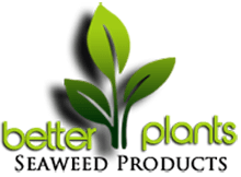 betterplants.ie