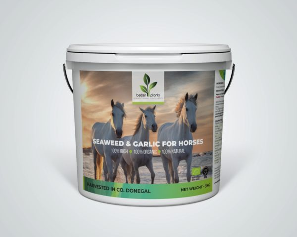 Garlic Seaweed for Horses